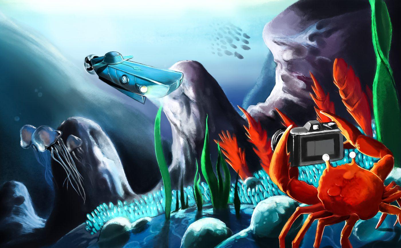 Nautylus-Fotografie.jpg